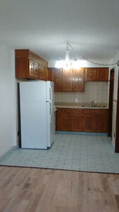 spacious one bedroom with den