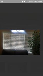 BAMBOO BLINDS LIFE TIME WARRANTY