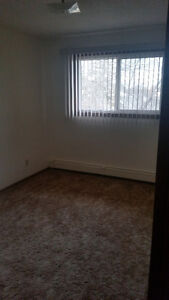 2-BEDROOM SUITE FOR RENT Strathcona County Edmonton Area image 2