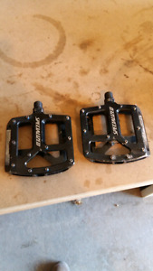 Sealed specialized pedals