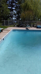 BY THE YARD, Lawn and Garden Care Belleville Belleville Area image 7