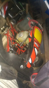2012 jeslo 125 rotax max go kart driven once