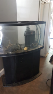 46 Gal bow face tank
