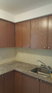 Renovated large 4 ½ w/ 1 ½ toilet for rent in CDN available Aug.