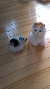 Real life looking kittens