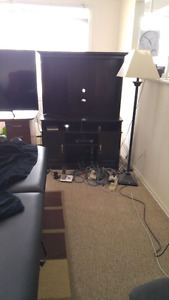 TV stand and entertainment cabinet