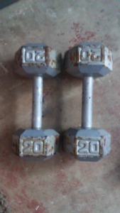 Steel hex head dumbbells