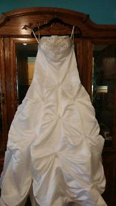 Beautiful dress and veil
