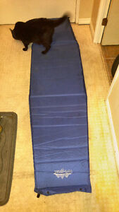 self inflatable mat/bed