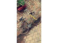 Rare found in this condition collectors item Raleigh Banana 12speed racing bike £250