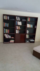 Moving Sale- Wall Unit