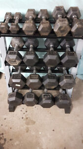 Rubber Hex Dumbbell Set 5-50LBS + Weight Stand