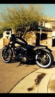 Looking for night rod 883