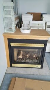 Gas Fireplace Napolean