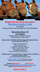 EQUINE HEALTH AND EMERGENCY FIRST AID in Smithers!!!