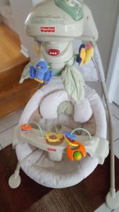 Fisher price nature's touch swing
