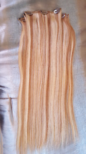 Human Hair Extentions