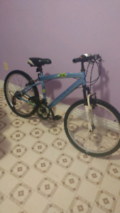 Huffy Rival 21 speed bike in great condition