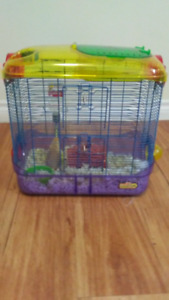 Gerbil with Cage - Reduced Price