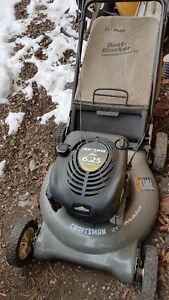 Craftsman Lawn Mower and lawn edger