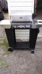 Dimplex outdoor living power chef electric barbecue