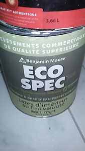 @ Benjamin Moore 3.3L Eco Spec paint white