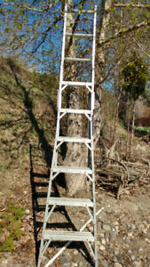 EXTENDABLE LADDER $50.00 please contact 250-307-5528
