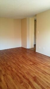 Two bedroom apartment for rent at 11940-104 Street NW Edmonton Edmonton Area image 3