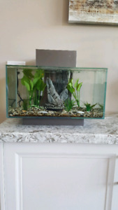 10 gallon fish tank $90 with heater and gravel