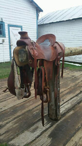Wade ropping saddle with matching breast collar
