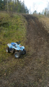Looking for Chinese 50cc atv roller