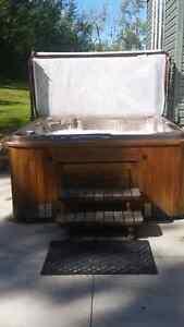 2010 Hydropool self-cleaning hot tub