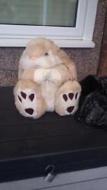 Fluffy Bunny & Dog £10