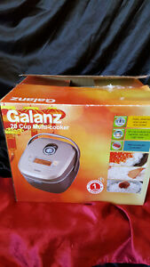 galanz 20 cup multi cooker