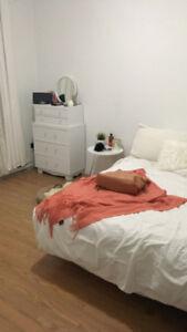 Appartement à louer Plateau Mont-Royal disponible Nov