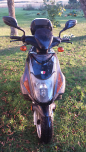 Faites une offre! Scooter Chironex  Chase 50