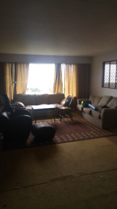 Nice large furnished room in nice mountain view available now
