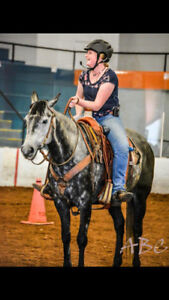 Pheonix Rising Stables is now offering Training and Lessons!
