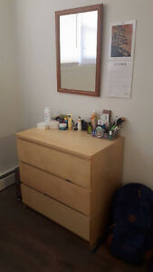 Subletting 1 Room for Winter 2017 Term Kitchener / Waterloo Kitchener Area image 4