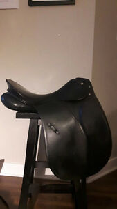 "17"" Passier Dressage Saddle"