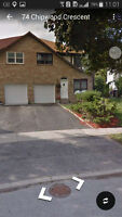 Bright and clean basement apartment in north york
