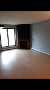 1 bedroom+den Lakewood condo for rent with rec room