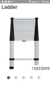 Telescopic ladder for sale $220
