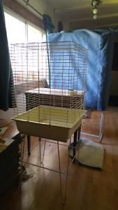 18x18 birdcage