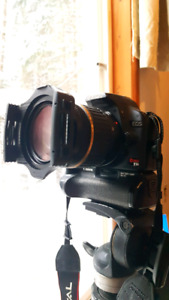 Canon T1i with Tamron 17-50mm
