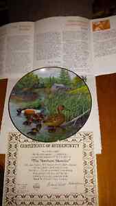 The Northern Shoveler collector plate