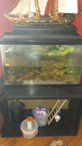 33 gallon fish tank with everything