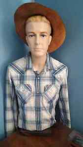 Male Torso Mannequin with Head