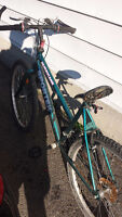 ladies mountain bike, $40 obo
