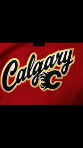 Calgary Flames tickets for sale. Section 212 Row 14. Centre Ice